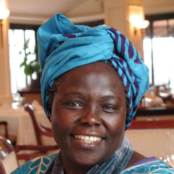Image of Wangari Maathai