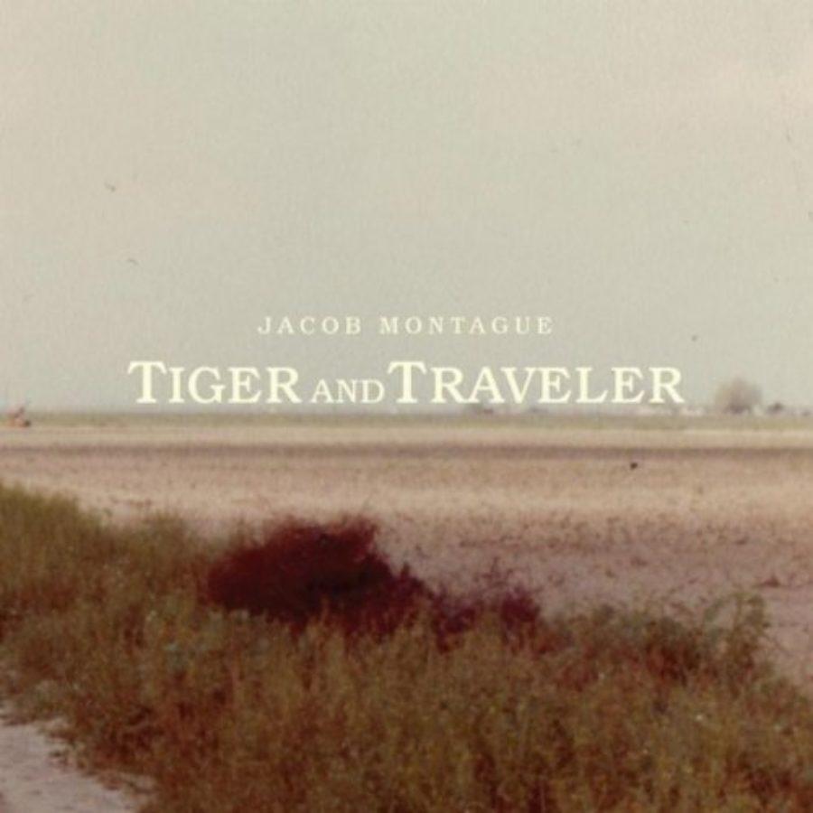 Cover of Traveler