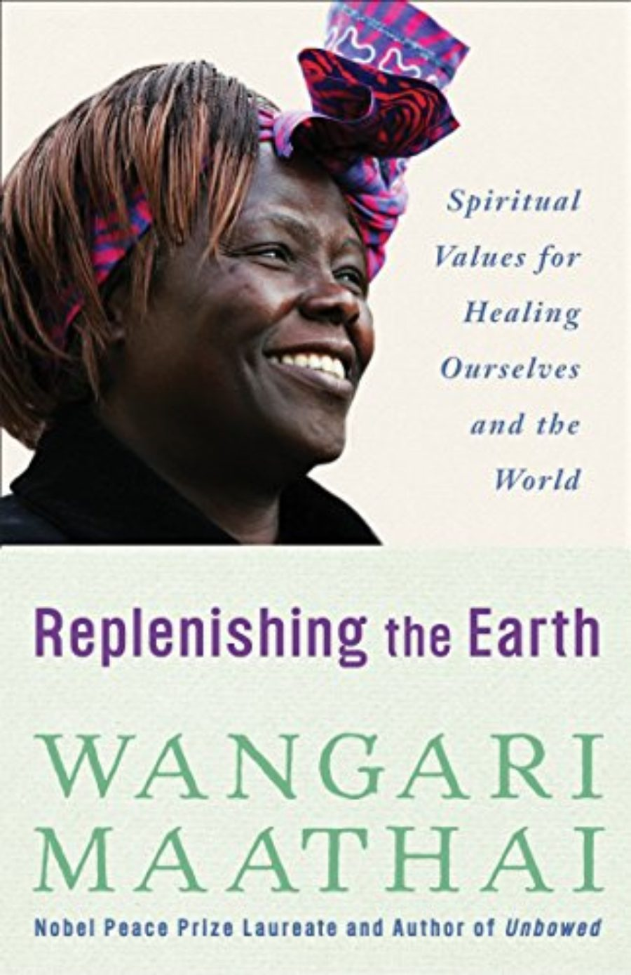 Cover of Replenishing the Earth: Spiritual Values for Healing Ourselves and the World