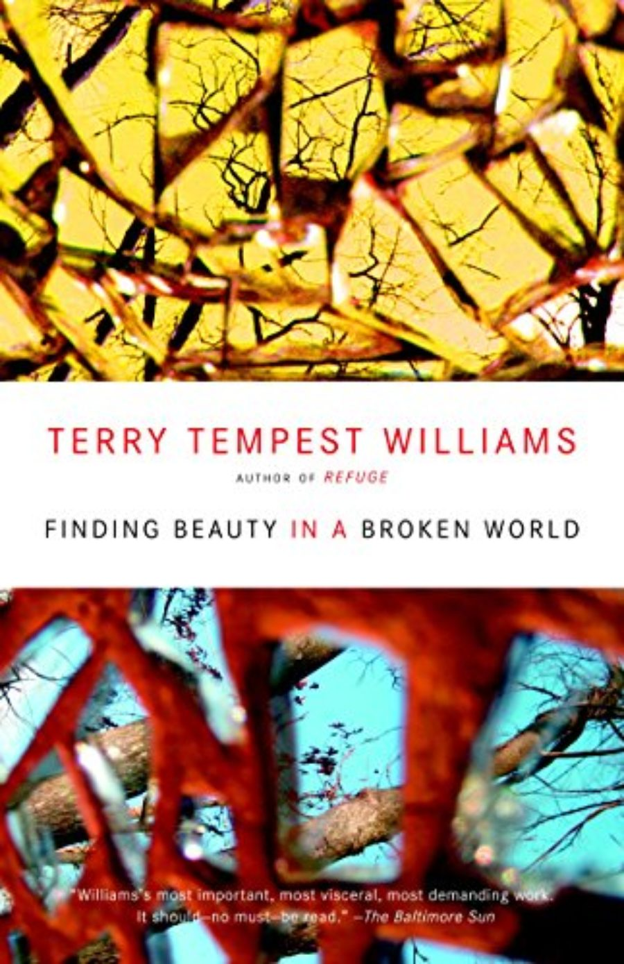 Cover of Finding Beauty in a Broken World