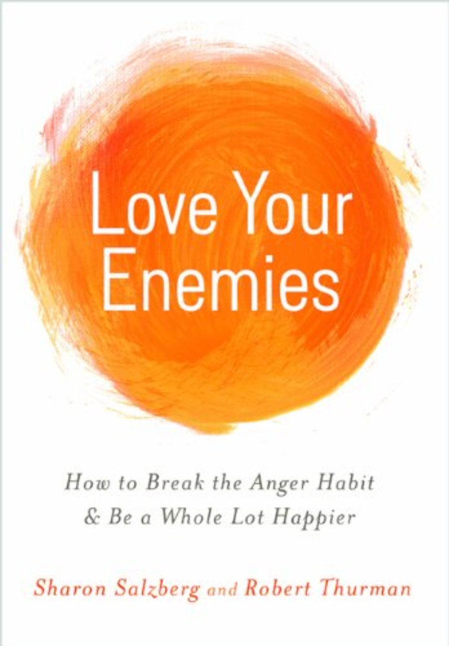 Cover of Love Your Enemies: How to Break the Anger Habit & Be a Whole Lot Happier