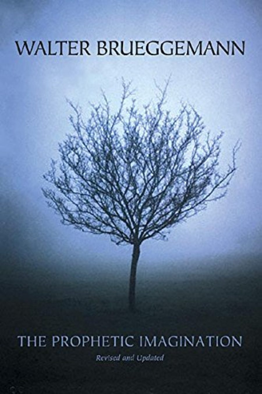Cover of The Prophetic Imagination, 2nd Edition