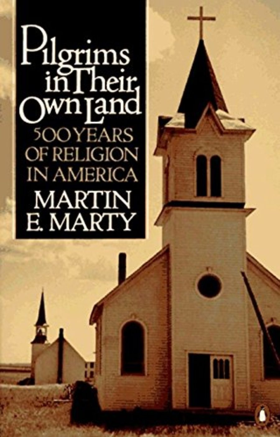 Cover of Pilgrims in Their Own Land: 500 Years of Religion in America