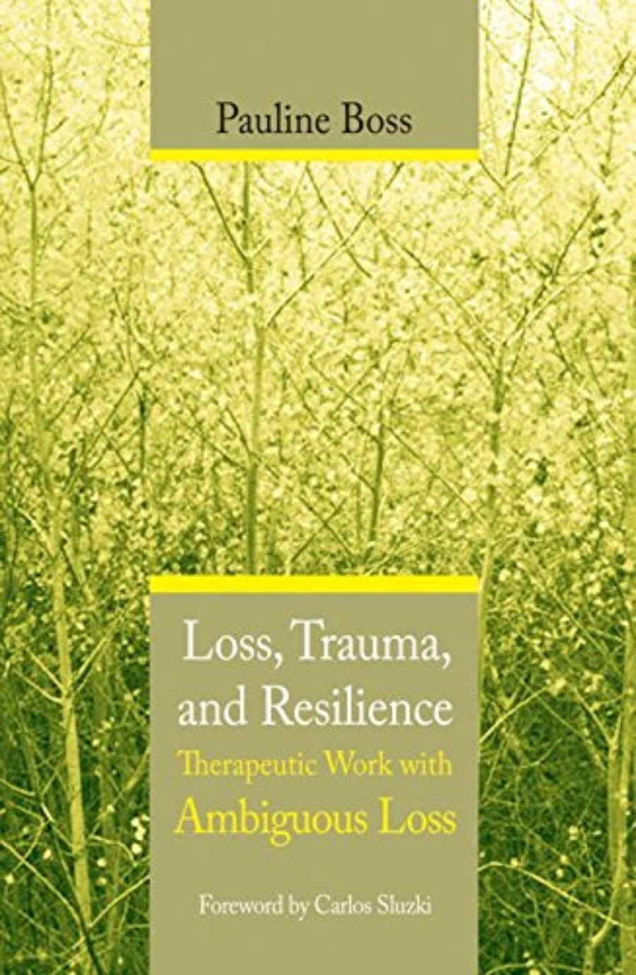 Cover of Loss, Trauma, and Resilience: Therapeutic Work With Ambiguous Loss