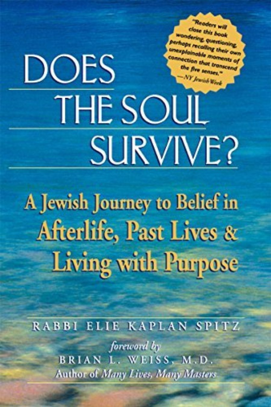 Cover of Does the Soul Survive?: A Jewish Journey to Belief in Afterlife, Past Lives & Living with Purpose