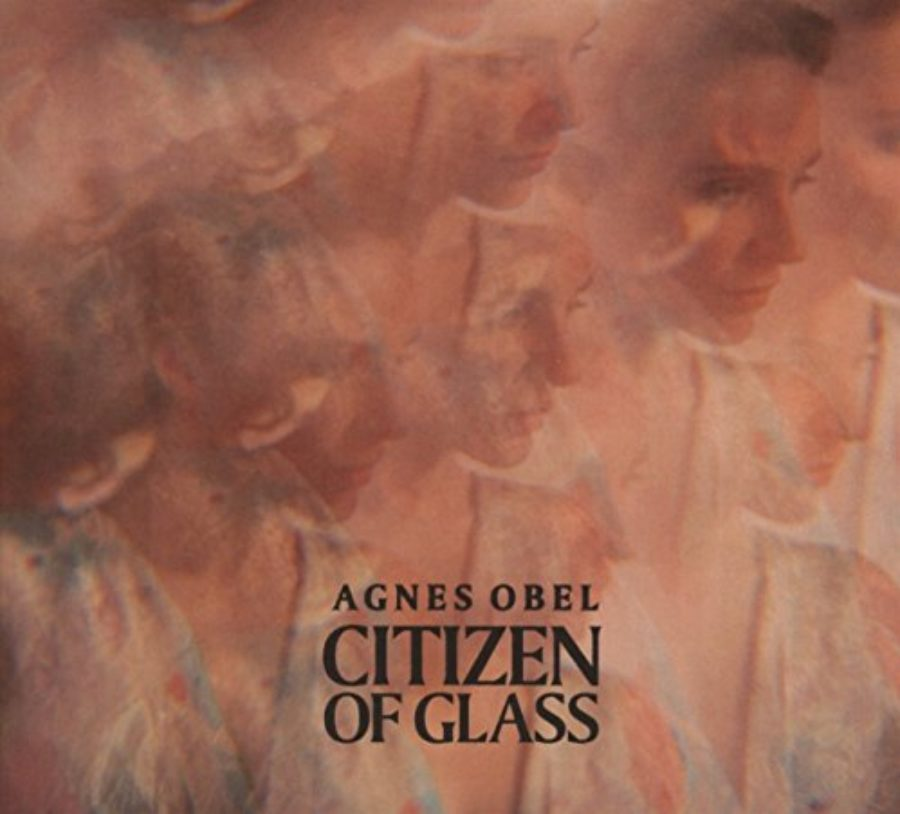 Cover of Citizen of Glass