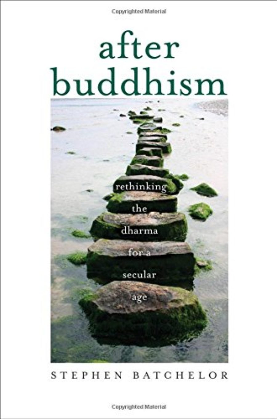 Cover of After Buddhism: Rethinking the Dharma for a Secular Age