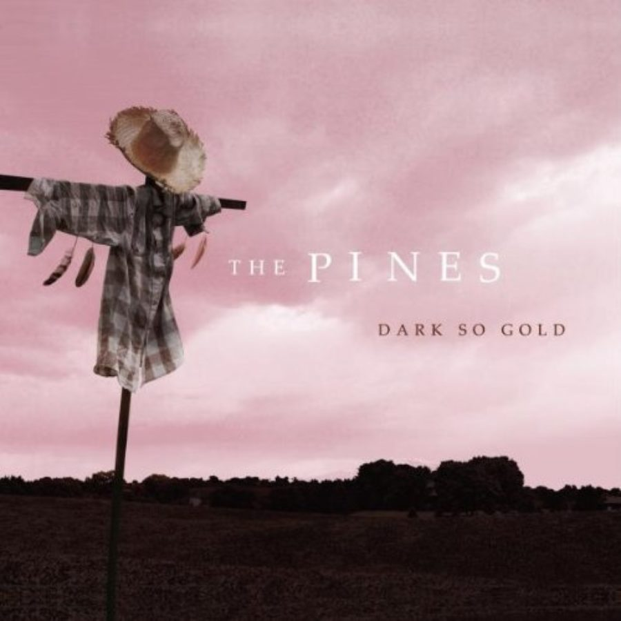 Cover of Dark So Gold