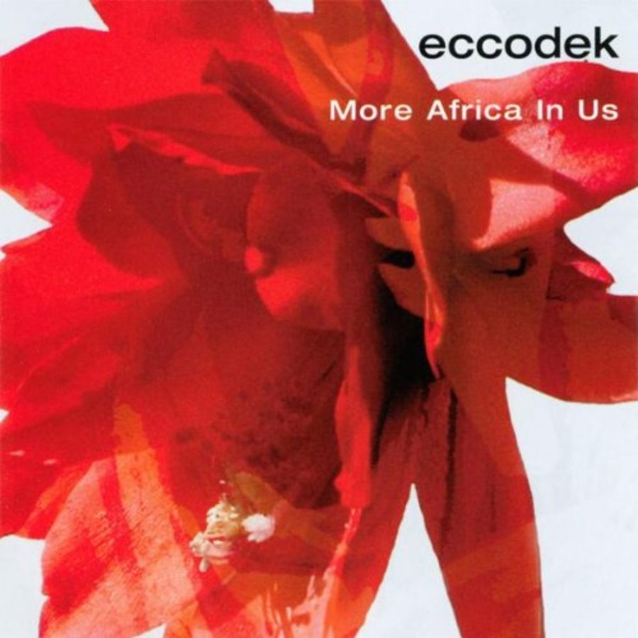 Cover of More Africa in Us