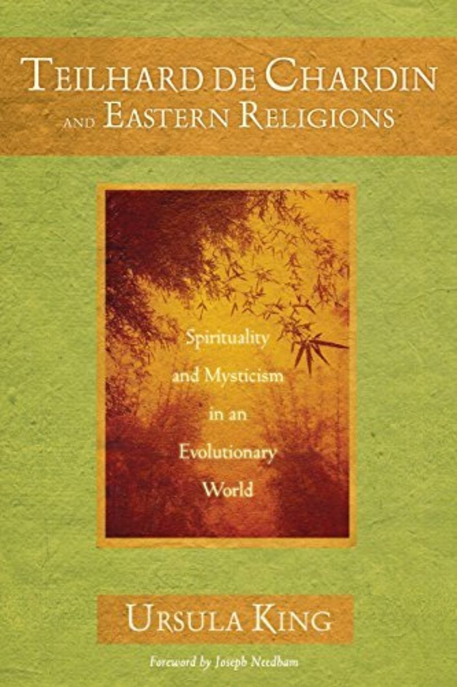 Cover of Teilhard de Chardin and Eastern Religions: Spirituality and Mysticism in an Evolutionary World