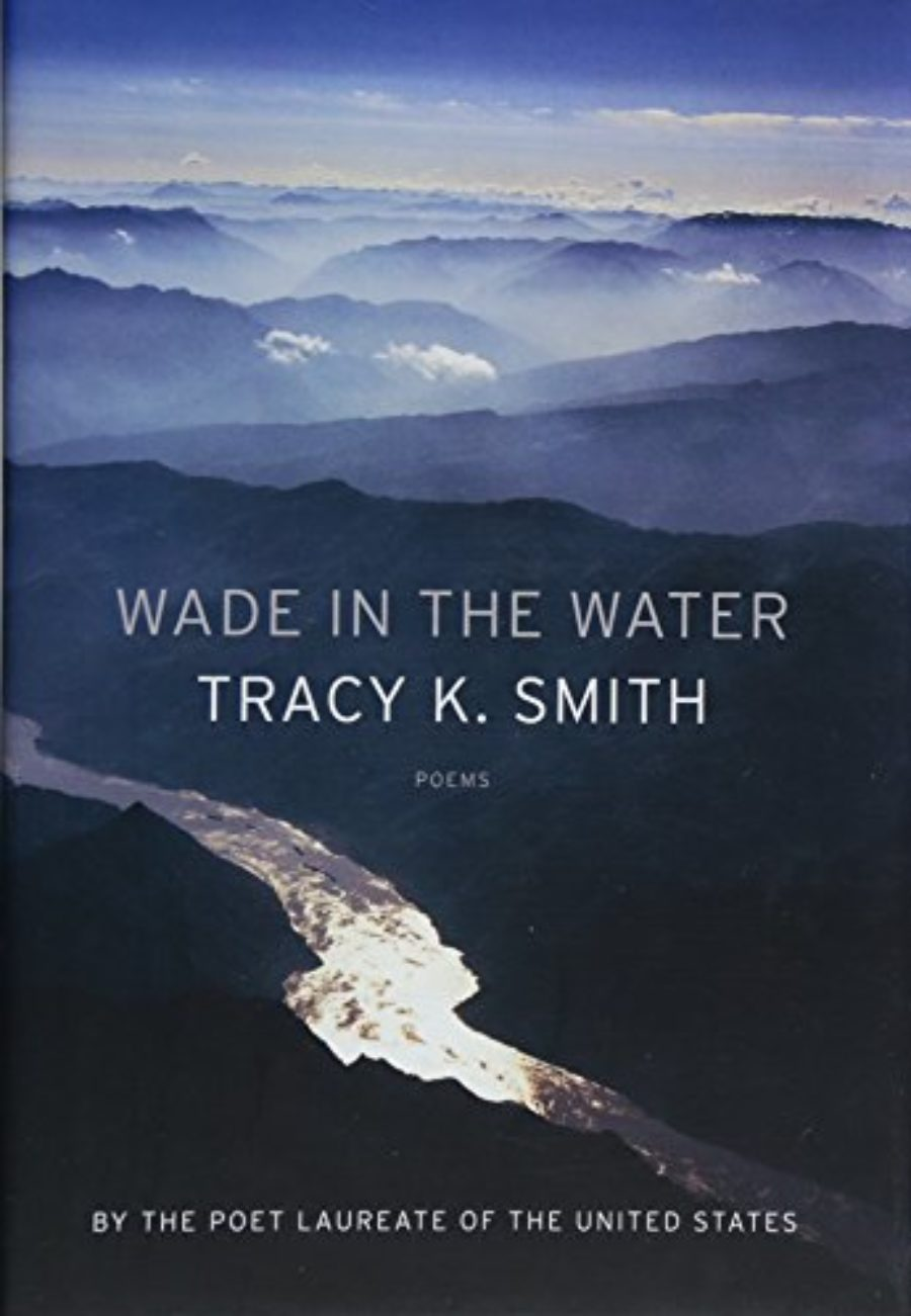 Cover of Wade in the Water: Poems