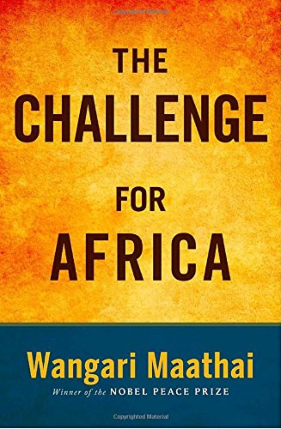 Cover of The Challenge for Africa