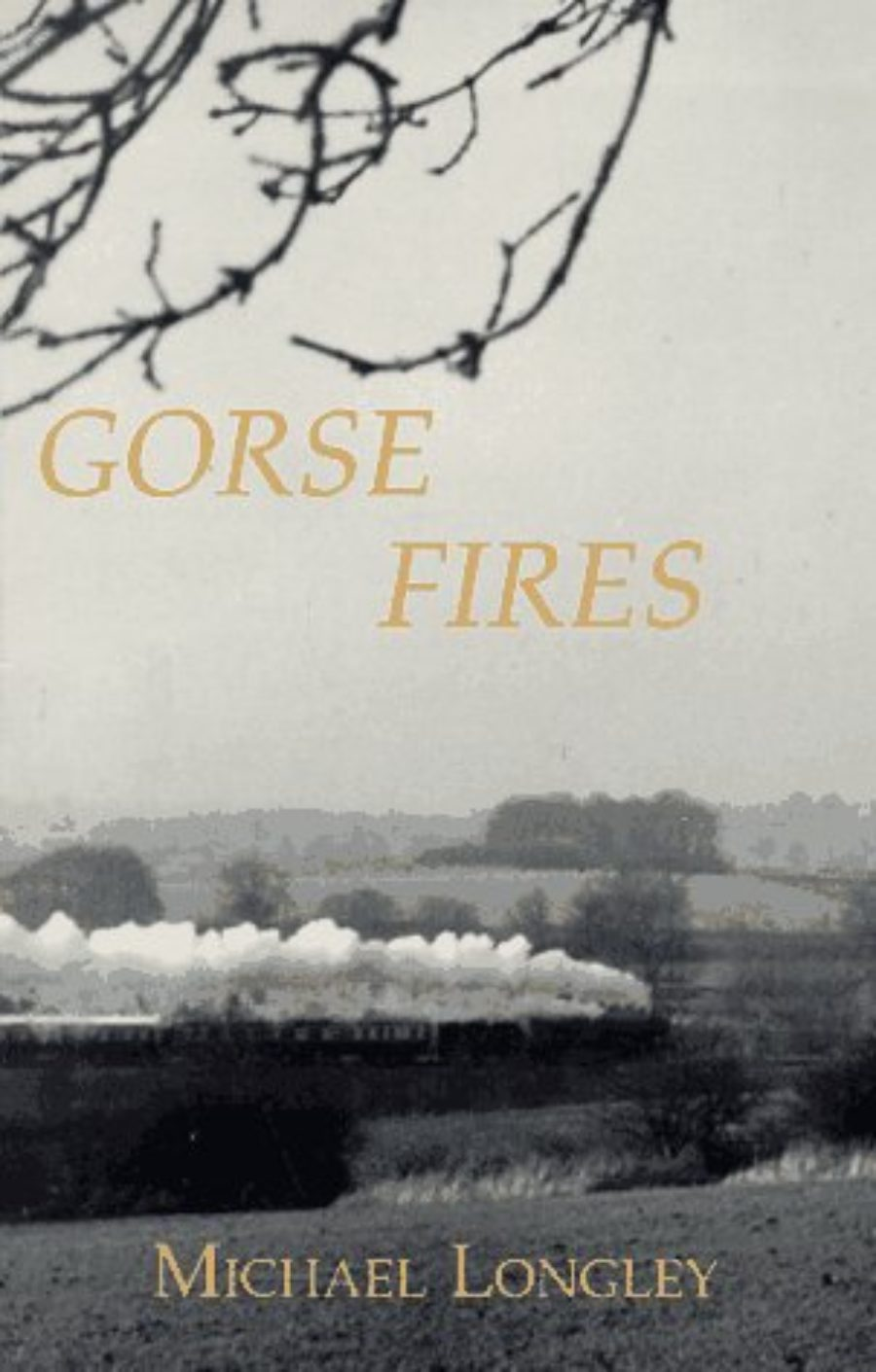 Cover of Gorse Fires