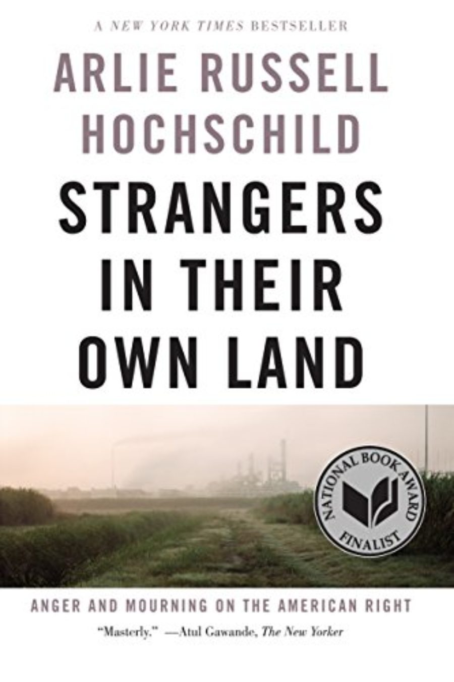 Cover of Strangers in Their Own Land: Anger and Mourning on the American Right