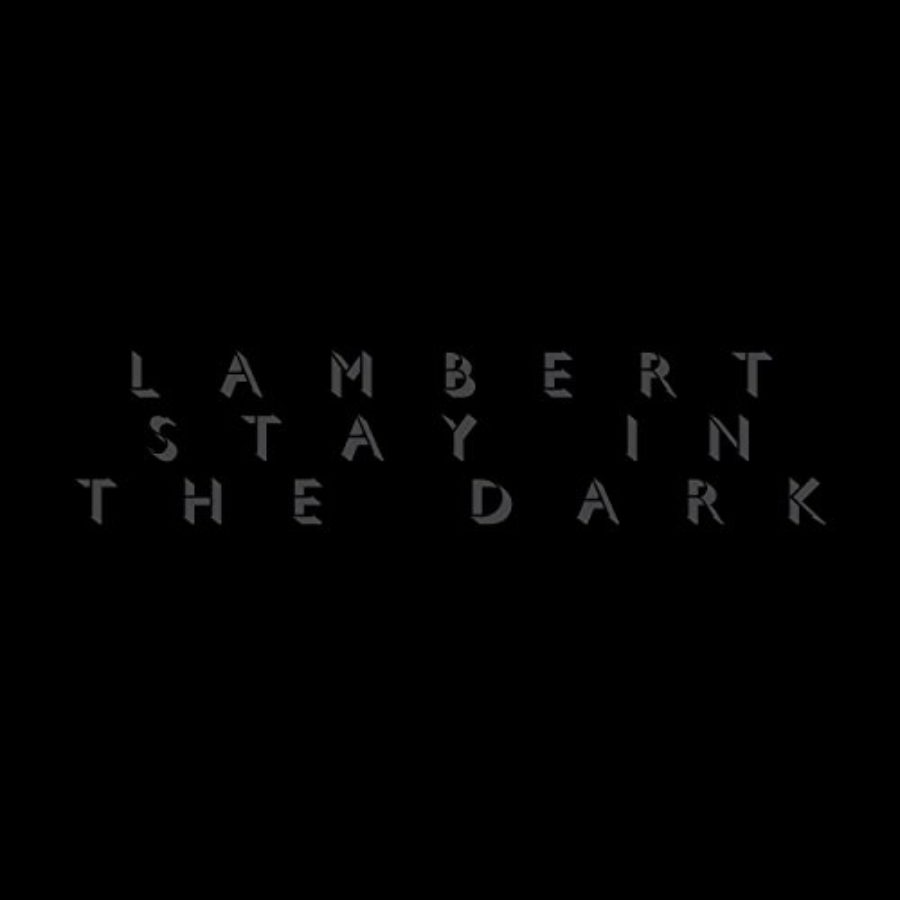 Cover of Stay In The Dark