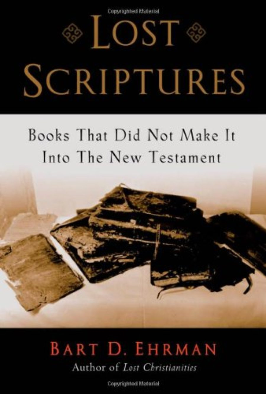 Cover of Lost Scriptures: Books that Did Not Make It into the New Testament
