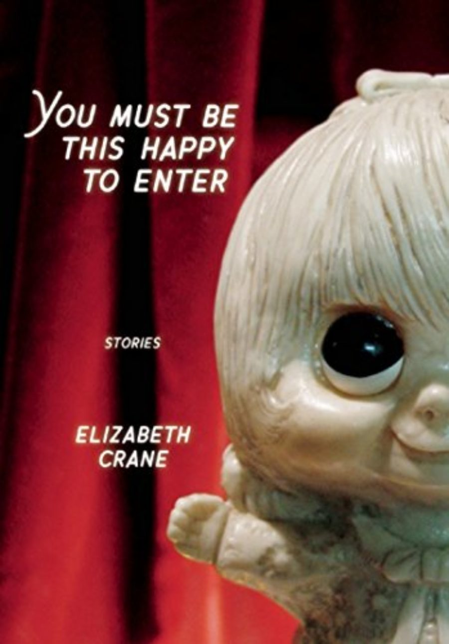 Cover of You Must Be This Happy to Enter: Stories (Punk Planet Books)