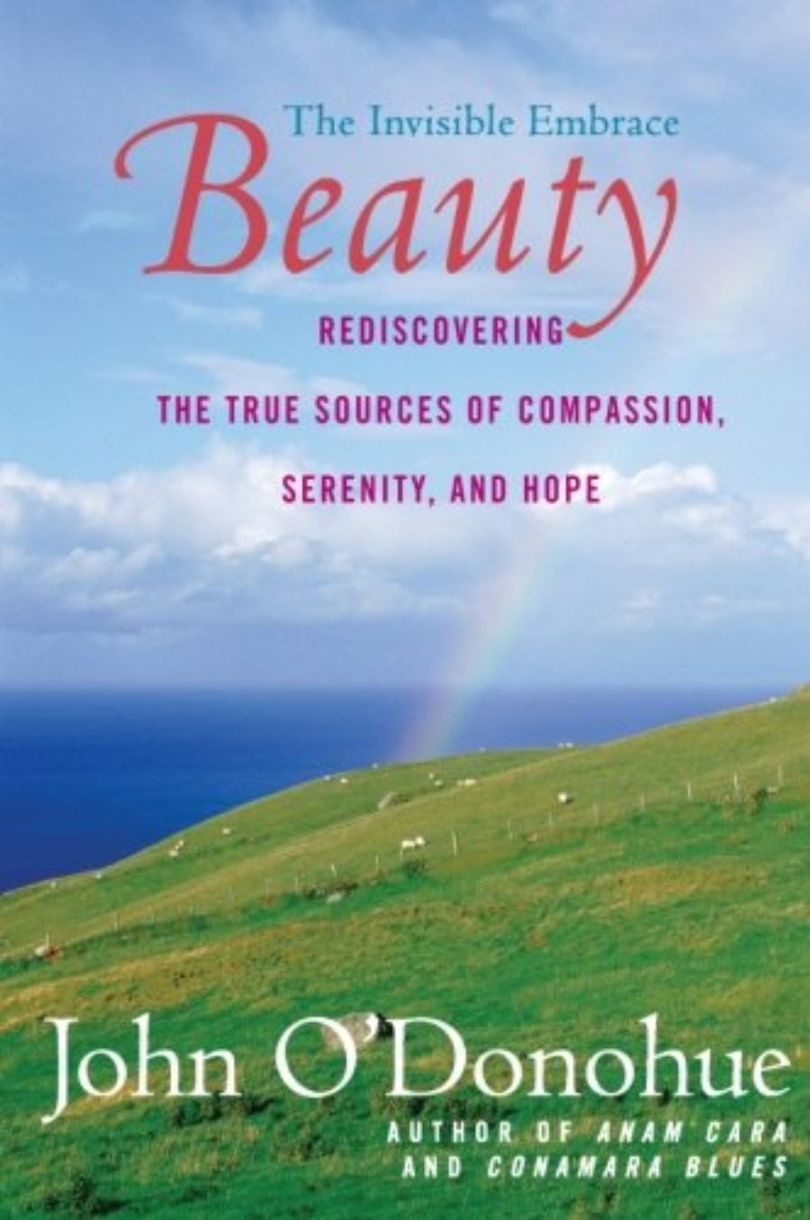 Cover of Beauty: The Invisible Embrace