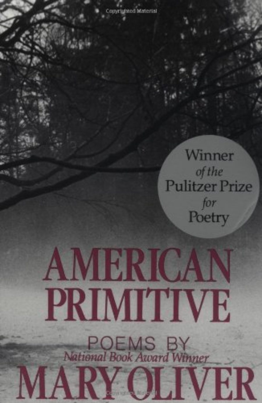 Cover of American Primitive