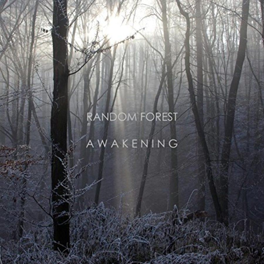 Cover of Awakening