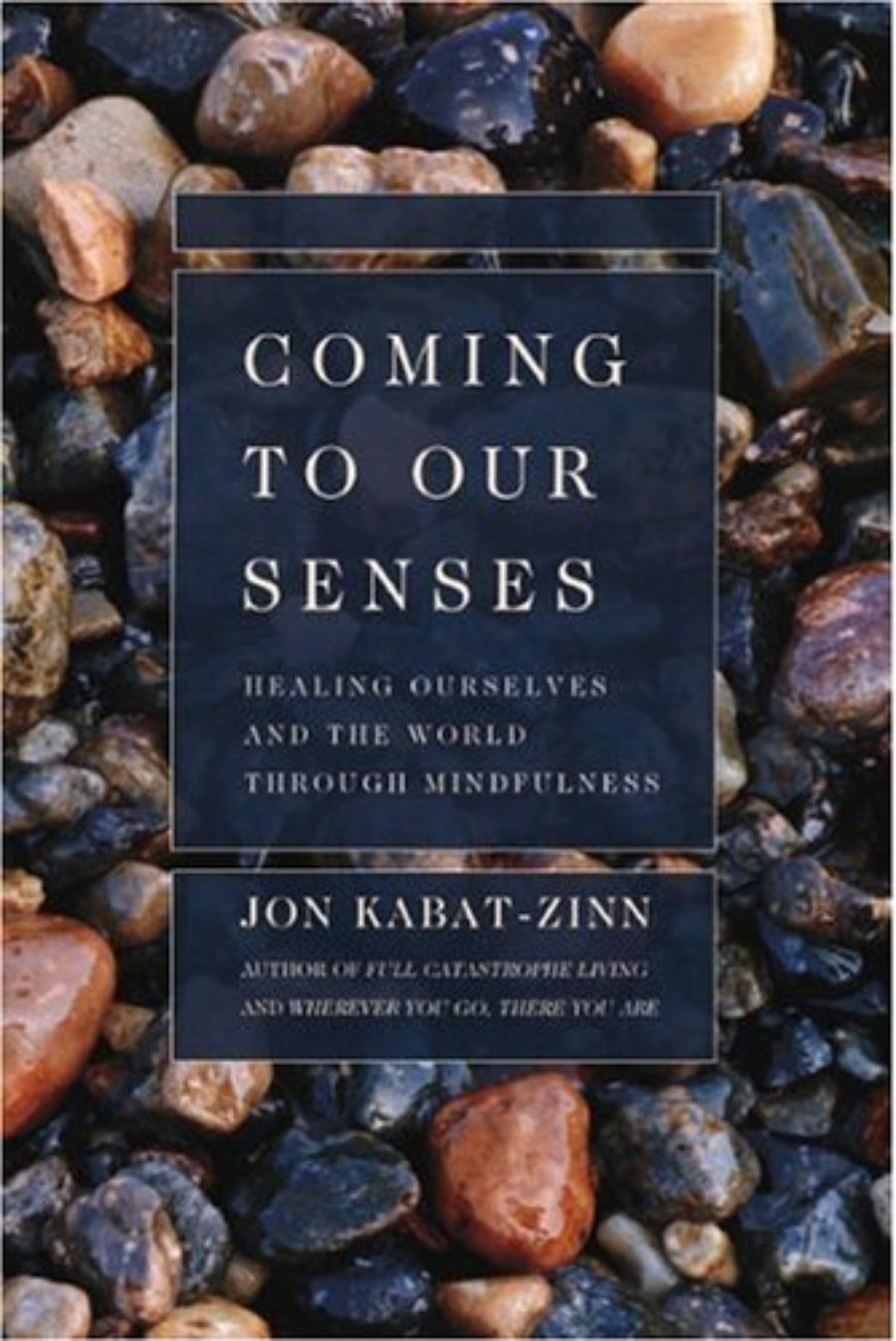 Cover of Coming to Our Senses: Healing Ourselves and the World Through Mindfulness