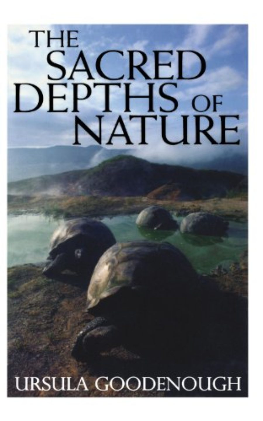 Cover of The Sacred Depths of Nature