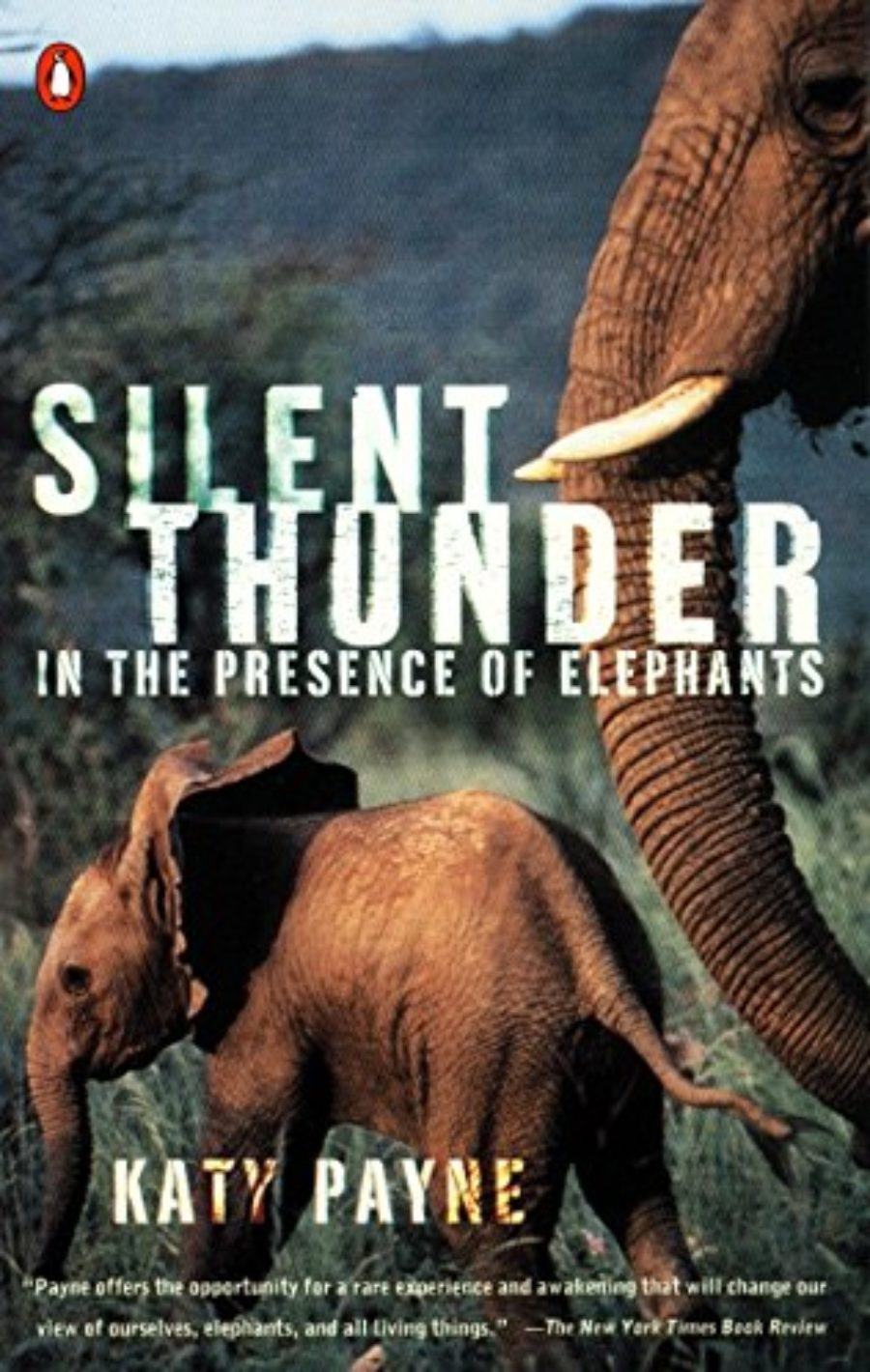 Cover of Silent Thunder: In the Presence of Elephants