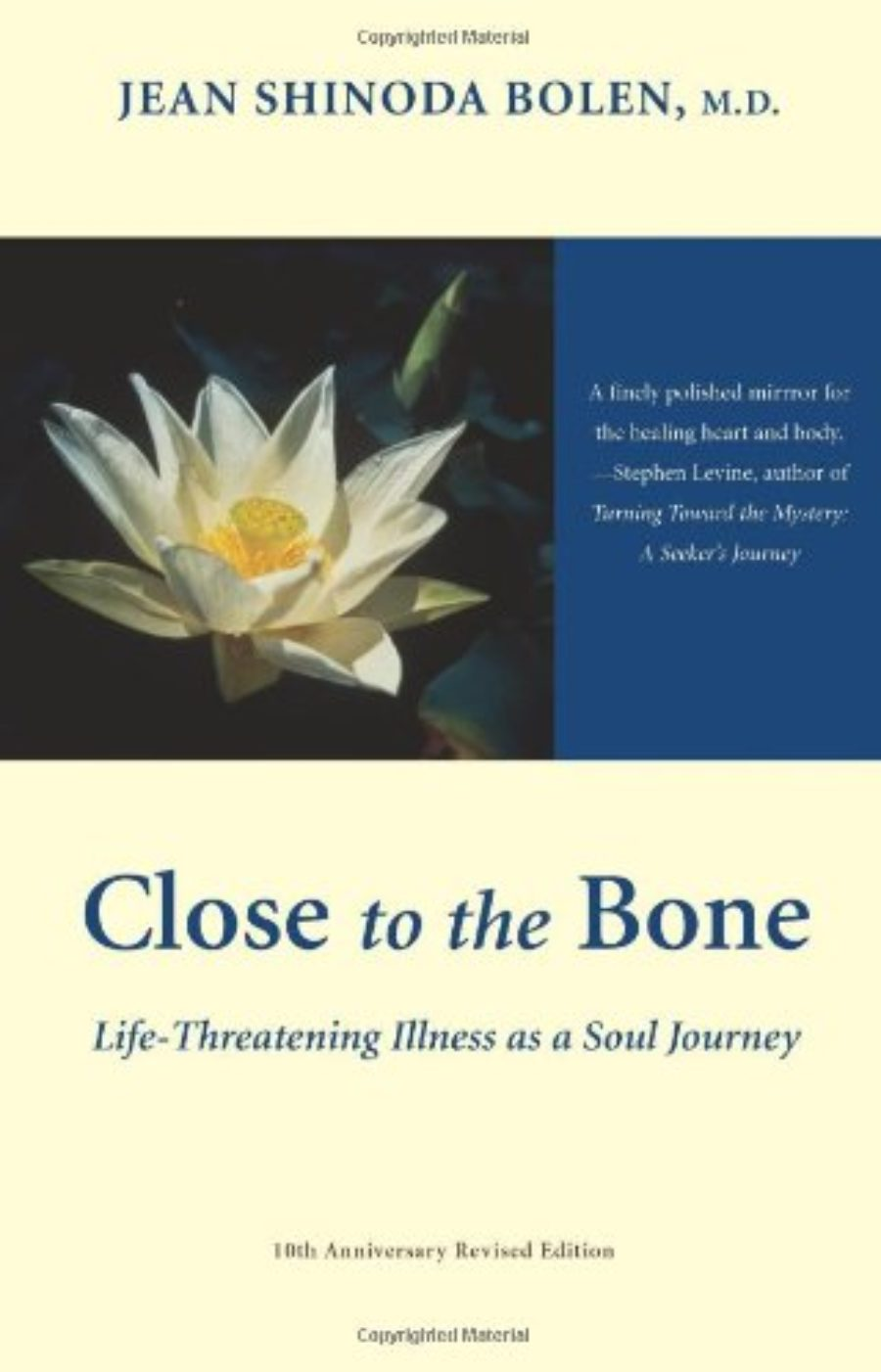 Cover of Close to the Bone: Life-Threatening Illness As a Soul Journey