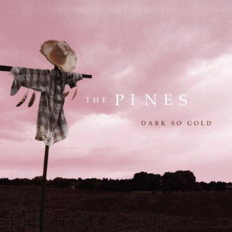 Cover of Dark So Gold