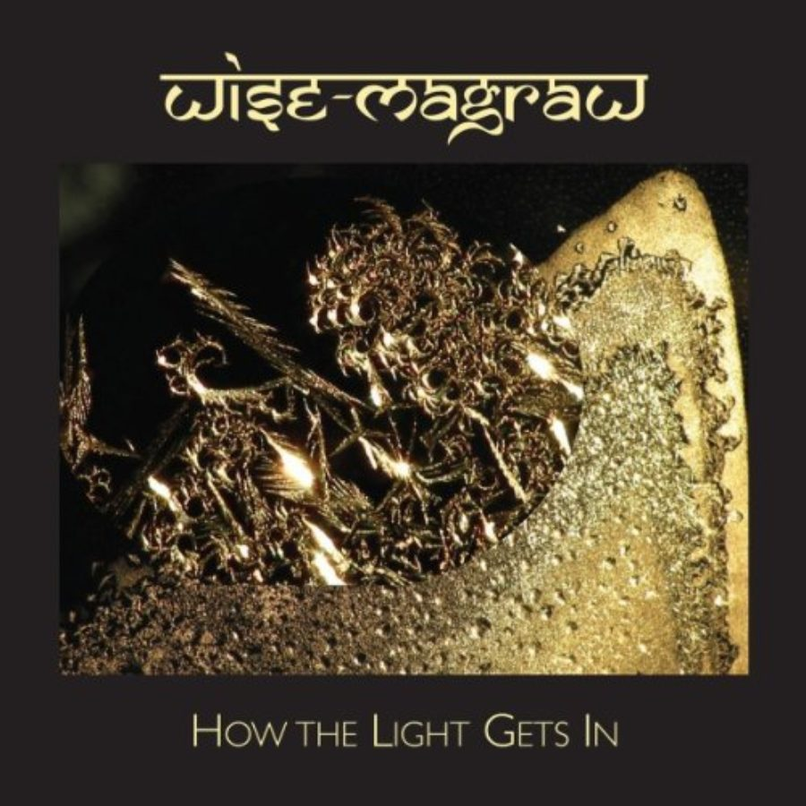 Cover of How the Light Gets In