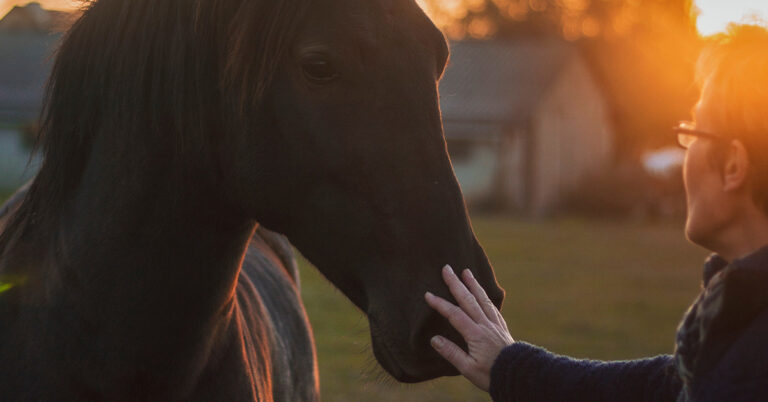 A woman gently pets a horse at sunset.