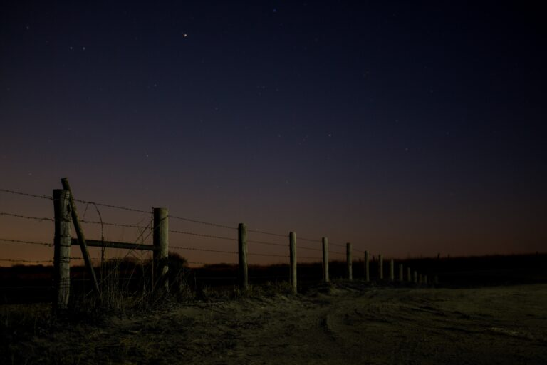 Farm scene at night.