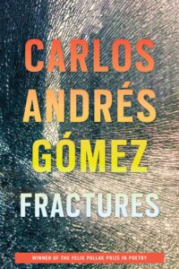 Cover of Fractures