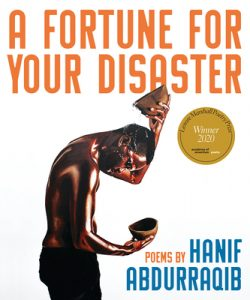 Cover of A Fortune For Your Disaster
