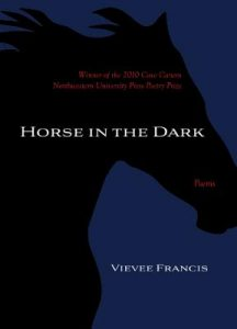 Cover of Horse in the Dark