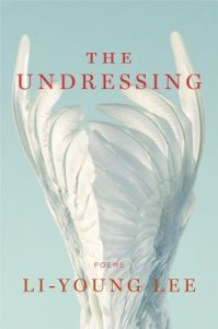 Cover of The Undressing
