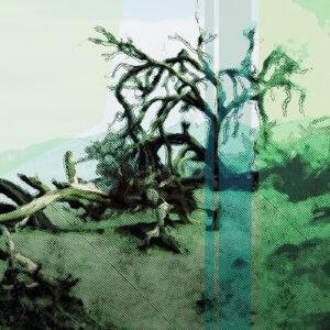 Cover of Cornicob